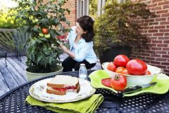 Tomatoes are a gardener's favorite, plant in ground, raised beds or in containers.