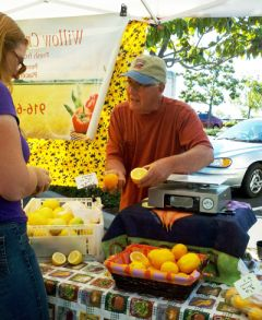 PlacerGROWN Farmers' Markets provide buyers with direct access to local farmers and fresh produce options for a healthy lifestyle.