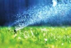 Rebates are available for water-efficient sprinkler heads, drip irrigation systems, pool covers and WaterSense-labeled weather-based irrigation controllers.
