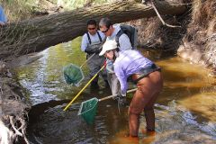 Be part of an area-wide volunteer effort to improve and enhance our urban waterways.  --Photo courtesy Creekweek.net