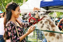 """""""Kids Day in the Park 2017 will offer more activities and fun than ever,"""" said Amy Hiramoto, Event Chair. """"We have been hard at work putting together a wonderful day for families to come out with their kids and enjoy green grass, fresh air and a lot of fun.""""  -- Photos courtesy Cordova Community Council"""