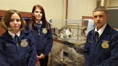 Left to right are Kaitlyn Hoyt, 15; Kimberly Griffin, 16, and Nick Haro, 15, who are raising rabbits as part of the Cordova High School Agricultural Academy.