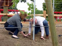 Getting your hands dirty goes for winemakers, planters and shortstops. 