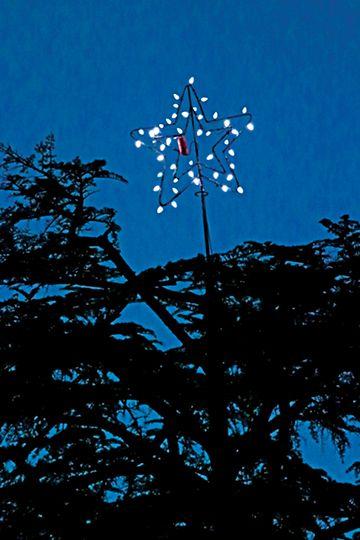 a starry christmas - Starry Christmas