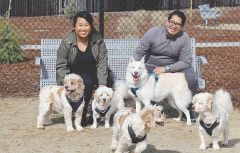 Nhia and Marco Ramos (and pooches) were among the first Eastern Oaks Park patrons to take advantage of a new dog enclosure at the seven-acre reserve.