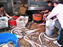 Large live eels don't get much fresher than at a Hong Kong street market. Photo by David Dickstein