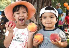 Peachy keen market visitors Isabella and Matthew Ramirez sampled fruit at the Carmichael Peach Festival.