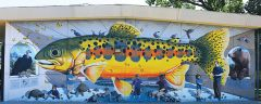 A 36-foot trout dominates Kocina's zoology mural. Subject matter reflects cultural studies at the Carmichael school.