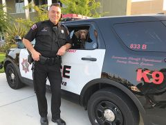 Detection K9 Zoe will be partnering with School Resource Officer Steve LeCouve. When he became a School Resource Officer, local school districts were looking for innovative approaches to address the changing landscape of schools, as well as drug and weapon searches. Photo courtesy RCPD