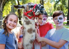 Adriana Avila and siblings Marlene and Kash Koehler met the Dottie Llama during Carmichael's Founders Day anniversary in Carmichael Park. The celebration commemorated the town's 1909 founding by Sacramento real estate entrepreneur Daniel Carmichael.