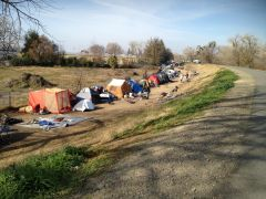 Since January 2018, Sacramento County rangers have issued 1,834 citations for unlawful camping under the County ordinance, and 224 citations for unlawful camping under the City of Sacramento ordinance. Photo courtesy SacCounty News