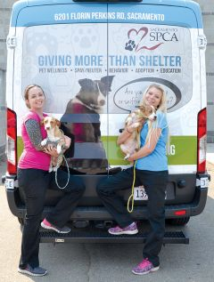 Sacramento SPCA Rescue Coordinator Emily Egle (on left) and Sacramento SPCA Foster Coordinator Palina Chordas with two transferred dogs from the Sacramento City Animal Control on Front Street. Photo courtesy SSPCA