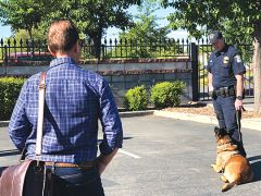 A K-9 demonstration was part of the instruction at the Business Academy. Courtesy of Citrus Heights Police Department